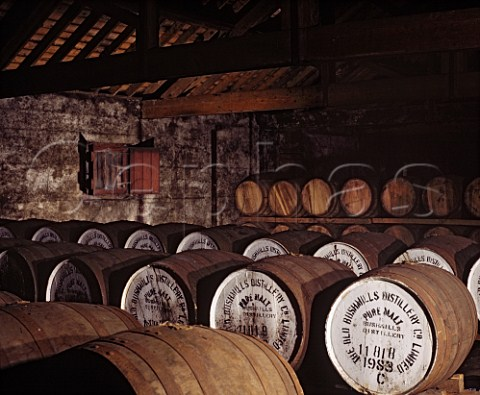 Casks of whiskey maturing in the atmospheric No7   warehouse of the Old Bushmills Distillery Bushmills   CoAntrim Northern Ireland