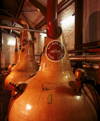 Copper Pot Stills in the stillhouse of the Old Bushmills Distillery Bushmills   Co Antrim Northern Ireland
