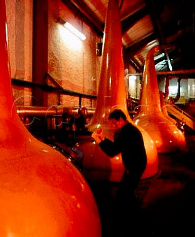 Copper Pot Stills in the stillhouse of the Old   Bushmills Distillery Bushmills CoAntrim Northern   Ireland