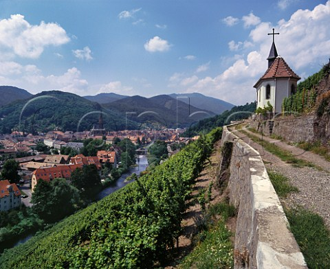View over Thann from Clos StUrbain on the hill of Rangen above the River Thur with the Vosges Mountains beyond  The vineyard owned by ZindHumbrecht is famous for its Riesling    HautRhin France    Alsace Grand Cru