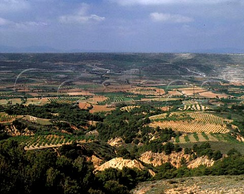 Vineyards and fruit and almond orchards are the main   forms of agriculture in the valleys around the town   of Miedes Aragon Spain  DO Calatayud