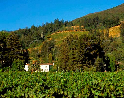 Chateau StJean below Sugarloaf Ridge Kenwood   Sonoma Valley California