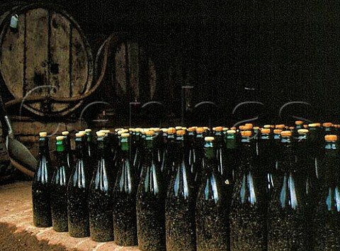 Brut Cider undergoing its final fermentation in bottle Paul Chanu StMartin de Sallen Normandy   France