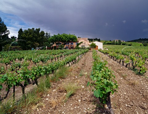 Domaine Alary and its vineyard Cairanne Vaucluse France   Ctes du RhneVillages