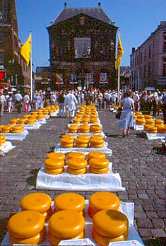 Cheeses in the Market Place in front of   the Waag Weighhouse   Gouda  Netherlands