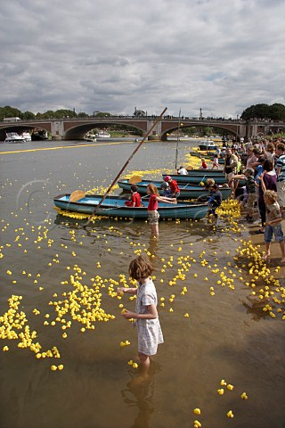 Children have fun as some of the 165000 plastic ducks get caught up around rowing boats near Hampton Court bridge on the River Thames during the Great British Duck Race 2007 a new Guinness World Record East Molesey Surrey England