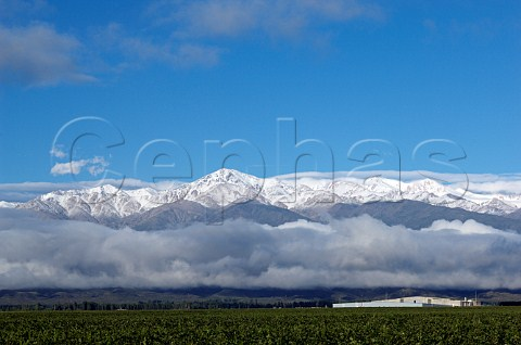 El Portillo winery part of Bodegas Salentein with snow capped Andes mountains behind Tunuyan Mendoza Argentina