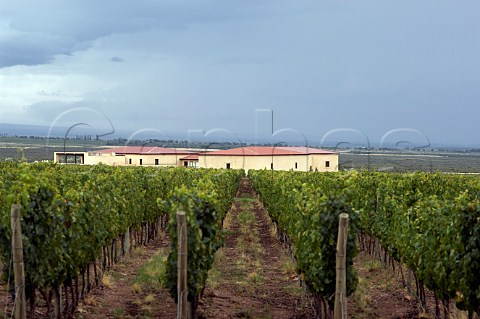 Cuvelier Los Andes winery and vineyard part of the Clos de Los Siete group Uco Valley Mendoza Argentina