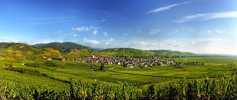 Ammerschwihr and its vineyards with the Vosges mountains beyond  HautRhin France    Alsace