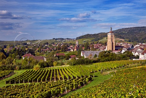 View over vineyards at En Paradis with the Church of StJust and Collegiate Church of NotreDame  Arbois Jura France