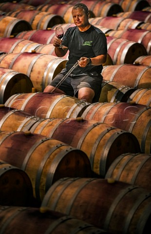 Abrie Besselar winemaker in barrel cellar of Kanonkop Stellenbosch Western Cape South Africa SimonsbergStellenbosch