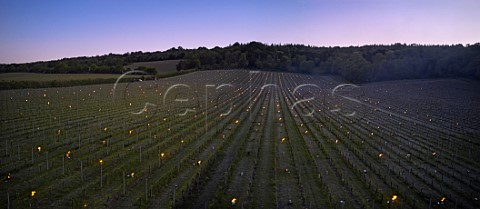 Candles burning on a frosty spring morning at Albury Vineyard Silent Pool Albury Surrey England