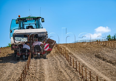 Planting new vineyard using a laserguided tractor Chteau de PailletQuancard Paillet Gironde France Cadillac  Ctes de Bordeaux